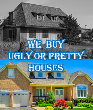 we buy ugly or pretty houses